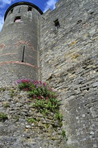 a tower in Carcassonne